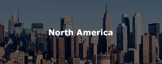 North America&nbsp;<br />
